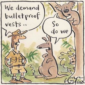 Hunting on public lands courtesy Cathy Wilcox